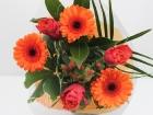 lisa-oranje