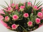 roos-keer-12-roze