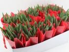 mini_tulp-in-tas-rood
